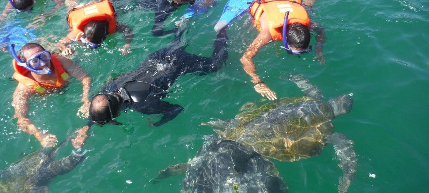 snorkeling piura