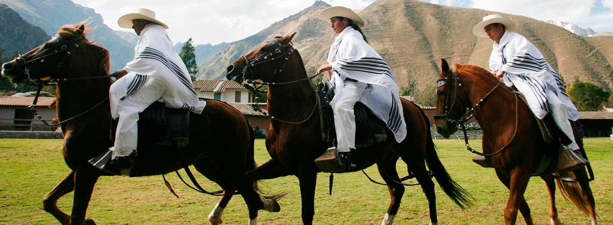 Tour Caballo de paso peruano